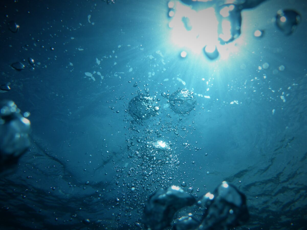 bubbles going upwards on a body of water